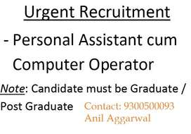 Job for One Content Writer and One Computer Operator