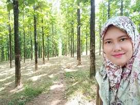 Tanah Murah Super Adem Kavling Jati Indah Transyogi