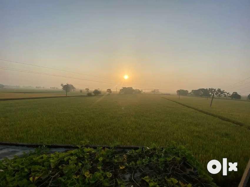 Agricultural land 0