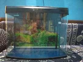 Safety glass aquarium