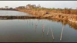 Jual Tanah Tambak 50 Ha, 500.000m2 Gresik, Ujung Pangkah, Pangkahwetan