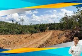 Di jual tanah 200 hektare di koto buayo batin xxiv batanghari jambi