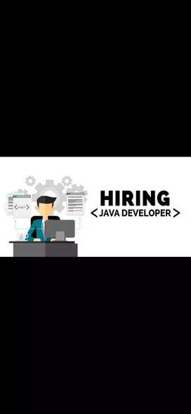 Java,Php & Android Developer