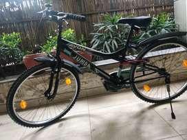 Avon Jumbo Bicycle