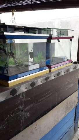 Aquarium fullset+variasi 40x30x35