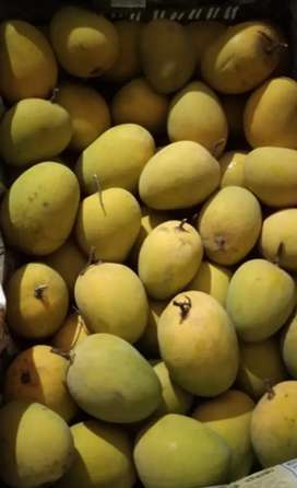 PURE ORGANIC  MANGO (HOME DELIVERY AVAILABLE)