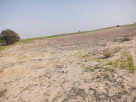 15 acer agricultural land near main road