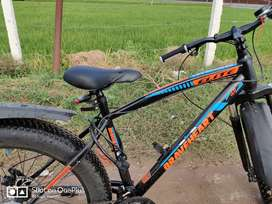Fat Bike - Strong Boy