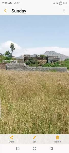 5 kanal agricultural land for sale in hassanabdal