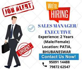 Sales manager @ executive.