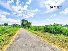 Tanah di Wedomartani Cocok Gudang, Investasi, Kost