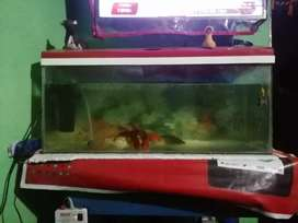 Aquarium with all aasesories new aquarium only 6month use