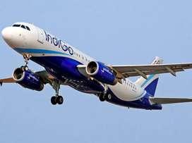 New hiring for ground staff at nearest airport  Indigo Airline Urgent