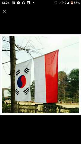 translator bahasa korea ke bahasa indonesia