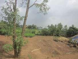 Farm land of 3.3 bigha for sale near Khachorad, Ratlam