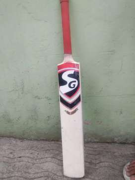 _SG_ (leather bat)