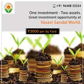 Get 10x Returns on Sandalwood plots with Less Investment