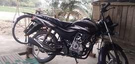 New model platina 100 cc bs4
