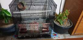 Large cage of 21 inches length, 18 inches bredth, and  23 inch height