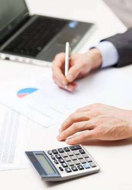 We provide Accounting, Tax and Govt. Filing Services