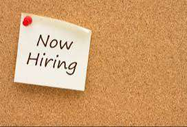 WANTED - Medical Billing & Caller Freshers for Both Day & Night Shifts