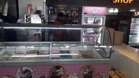 Elanpro ice cream freezer 625 litre for sale