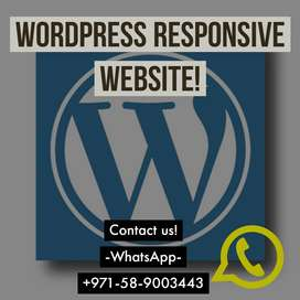 Wordpress/ Ecomerce websites/customized Websites/Website modification
