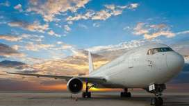 Apply in Vistara Airline For Ground Staff .  Helping and assisting the