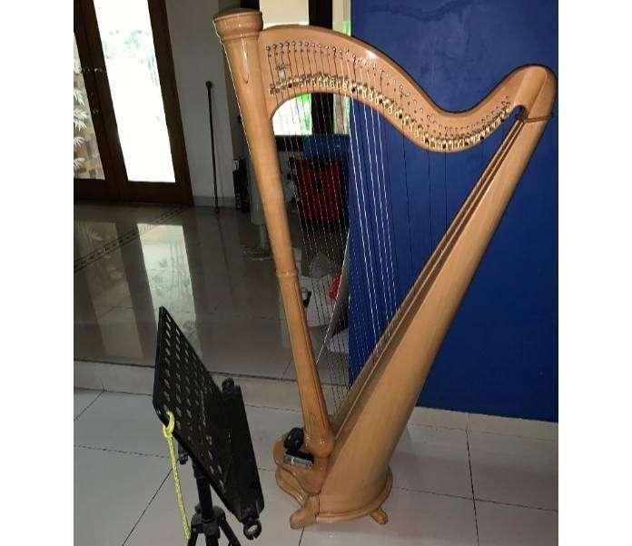 Harpa Ukuran Sedang 0