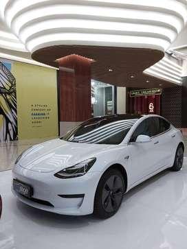 Tesla Model 3 Standard Range Plus 2019
