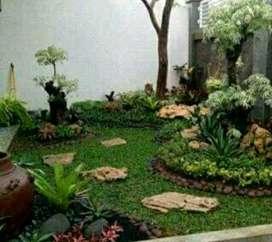 Jual rumput/tukang taman dan kolam