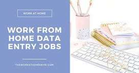 Data Entry Work at Your Home - Online ( Rs.10 per data Entry )