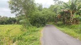 Jual Tanah di Kuripan Lombok Barat