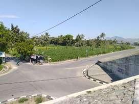 Tanah cocok untuk Gudang di Bypass Banyumulek