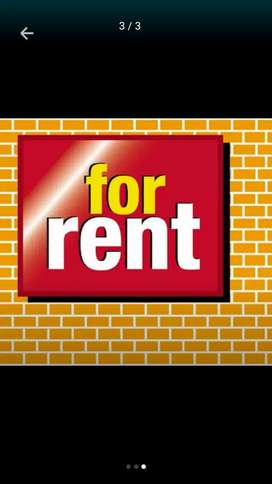 House for rent naseem town