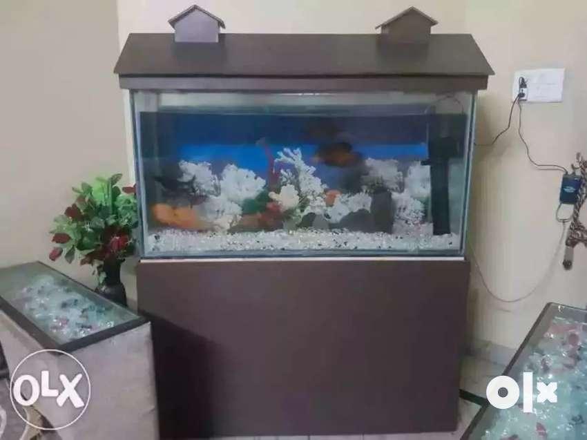 Fish tank. 0