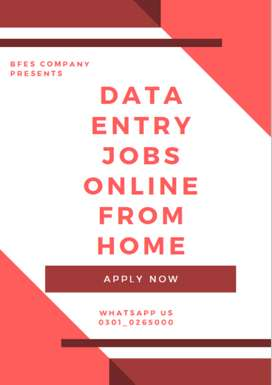 Blazing offer for males & females Data Entry online job offers in Paki