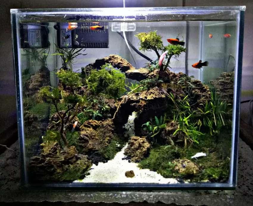 Jual Aquarium Aquascape Full Set 45cm 0