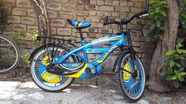 Lion Kings Bicycle
