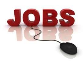 Apply for back office work