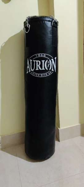 Punching bag aurion
