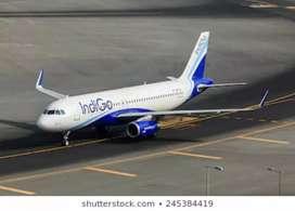 Multi tasking staff in Indigo Airlines for ground staff