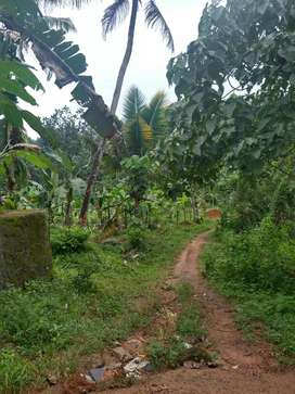 1.42 Acres of land suitable for villa project/commercial purpose