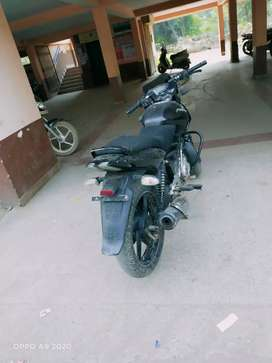 Pulsar 150 cc bike 2013 model