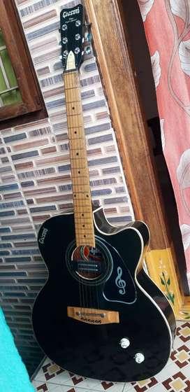 A beautiful guitar