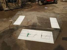 Bird cage sell
