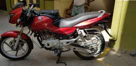 Good Condition Pulsar Single owner