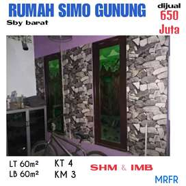 Rumah Simo gunung