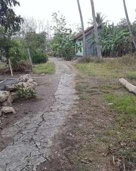 Jual tanah pekarangan di Sentolo jl Yogya Wates Km 19 Kulonprogo