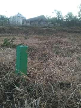Tanah kavling pekarangan siap bangun ukuran 7 x12